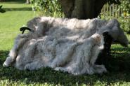 "echte Lammfelldecke Felldecke Toscana Lammfell ""Alpaka Look"""