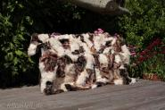Real Toscana Shearling blanket, throw 200 x 155 cm multicolor #2