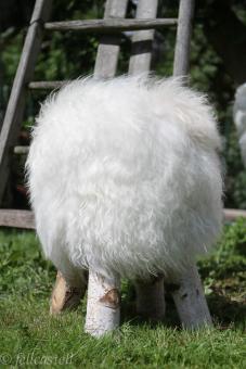 Fellhocker mit Island Schaffell Bezug naturweiss Birkenholz Beine