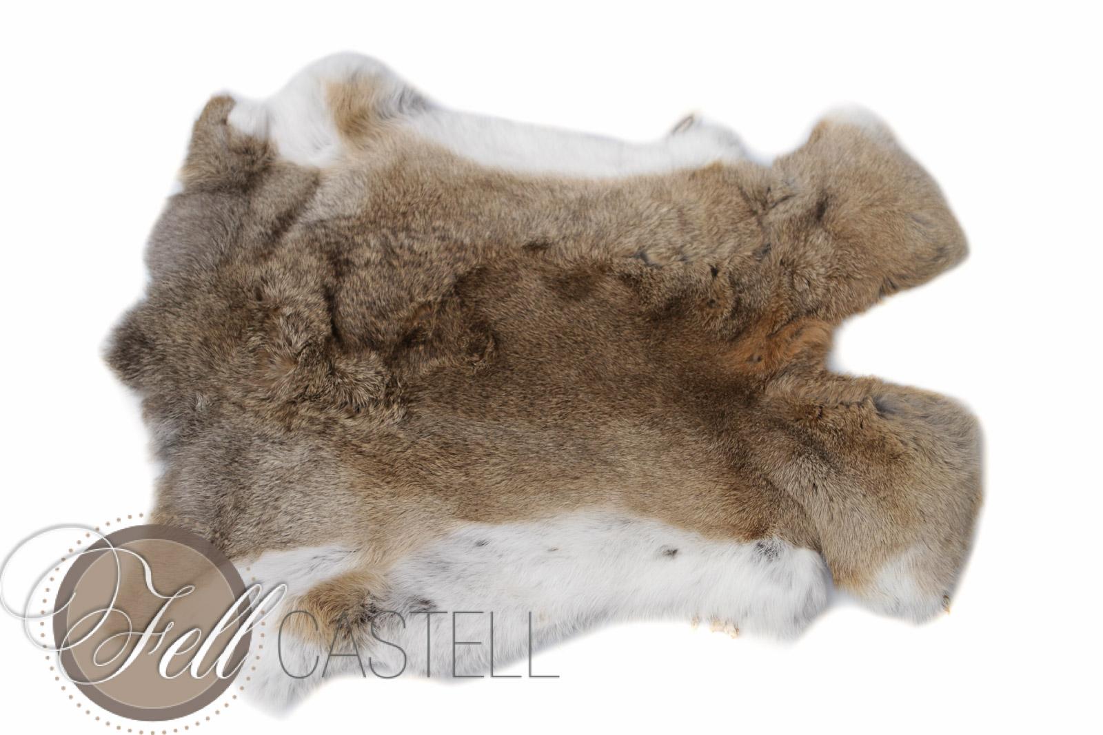 Kaninchen Fell Belgischer Riese Kanin