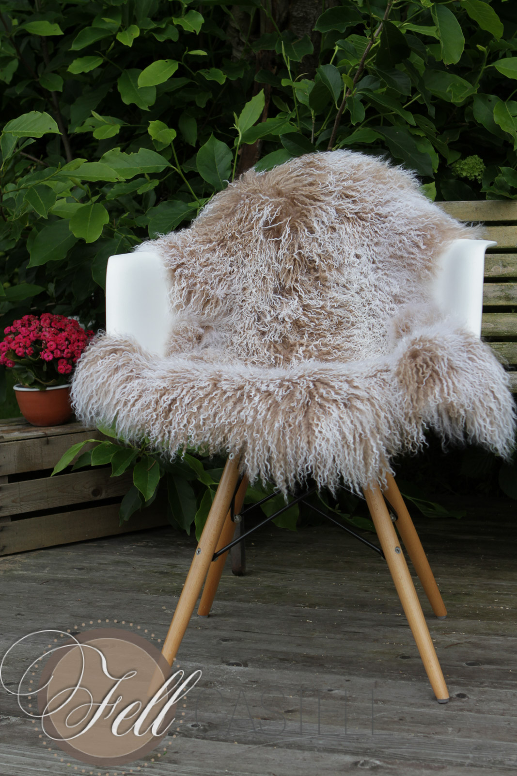tibet lammfell beige mit weissen spitzen lammfell schaffell shop. Black Bedroom Furniture Sets. Home Design Ideas