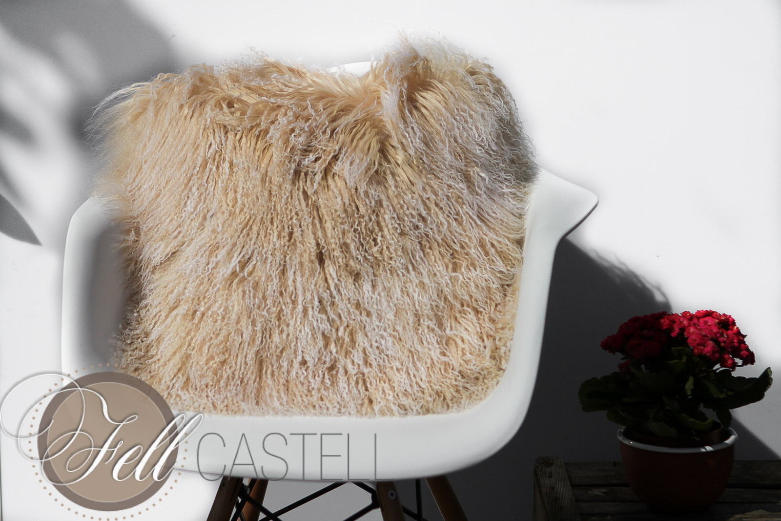 kissen tibet lammfell tibetlammfell champagne lammfell schaffell shop. Black Bedroom Furniture Sets. Home Design Ideas